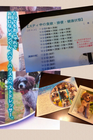 image-20120819160147.png