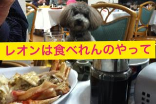 image-20130523220930.png